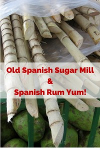This is a good half day trip fromAlmuñécar. You will experience an old Spanish sugar mill, take a tour of a rum distillery and taste some Spanish rum. All in Costa Tropical along the Granada Coast. Read more on Almunecarinfo.com