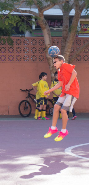 Sports, Clubs and Social Groups in Almunecar and La Herradura. Read more on Almunecarinfo.com