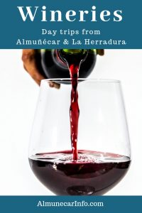Bodegas of Spanish Wine - Day Trips from Almuñecar. There is a revolution going on in the Spanish wine industry the Granada Spain is leading the way. Visit these bodegas within an hour's drive from Almuñecar. Read more on Almunecarinfo.com