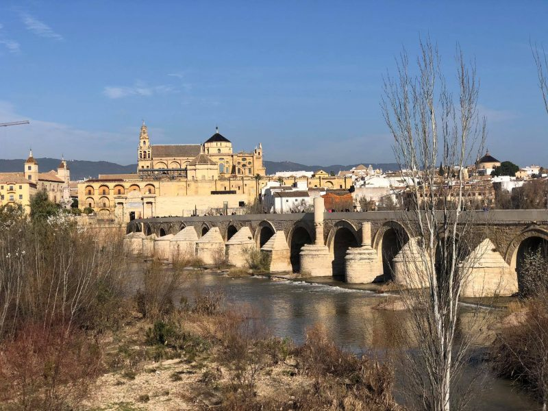 Cordoba day trip - Enjoy one of thesebus tours from Almuñécar. With amazing day excursions to choose from, as well as a guided tour when youarrive or explore on your own.